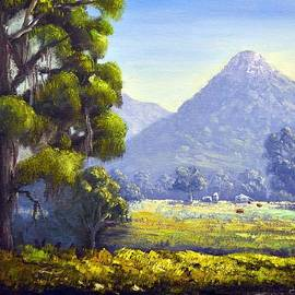 Christopher Vidal - Near Warrenbungles
