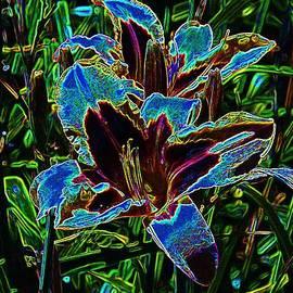 Lorna Kay - Neon Lilies Blue