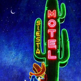R christopher Vest - Neon Moonlight Siesta Motel