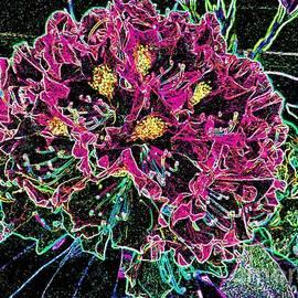 Annie Zeno - Neon Rhododendron
