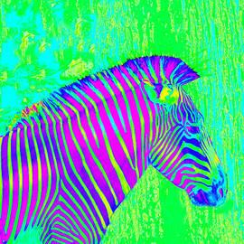 Jane Schnetlage - Neon Zebra 2