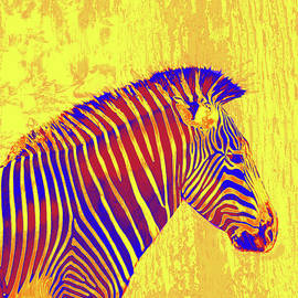 Jane Schnetlage - Neon Zebra 2 - Yellow