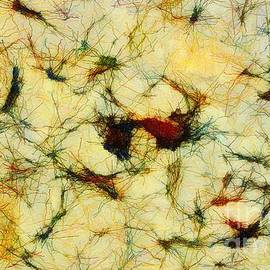 RC deWinter - Neuron Jungle