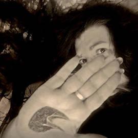 Susan Maxwell Schmidt - Nevermore