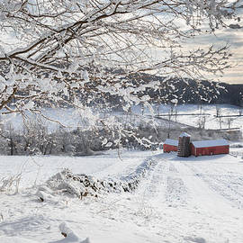 Bill  Wakeley - New England Winter Farms