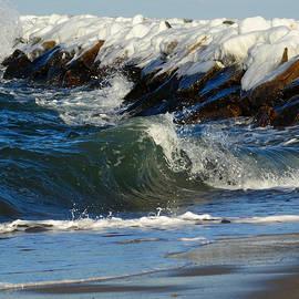 Dianne Cowen - New England Winter Seashore