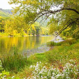 Karol  Livote - New Englands Early Autumn