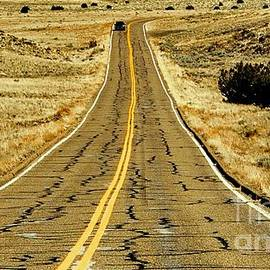 Tim Richards - New Mexico Highway