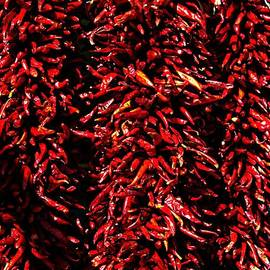 Barbara Chichester - New Mexico Red Chili Ristras