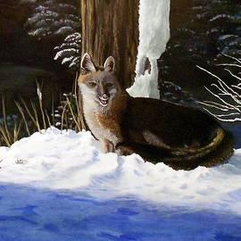 Sheri Keith - New Mexico Swift Fox