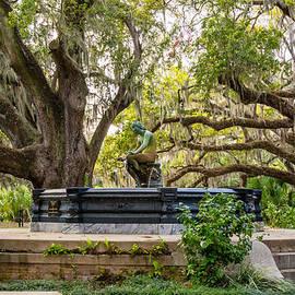 Steve Harrington - New Orleans Fountain