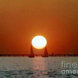 Michael Hoard - New Orleans Sailing Sun On Lake Pontchartrain