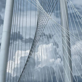 Joan Carroll - New Skyline Bridge