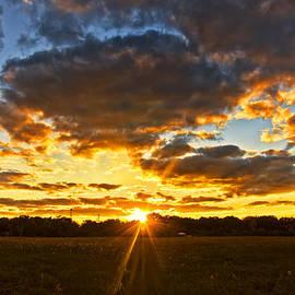 Louise Hill - New Smyrna Beach Sunset