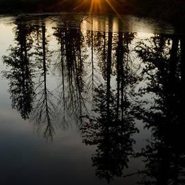 Nick  Boren - New Year Sunset