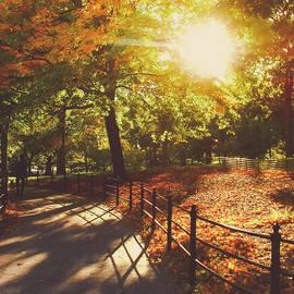Vivienne Gucwa - New York Autumn - Sunset - Central Park