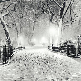 Vivienne Gucwa - New York Winter Landscape - Madison Square Park Snow
