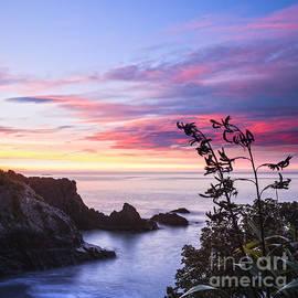 Colin and Linda McKie - New Zealand Marlborough Sunrise
