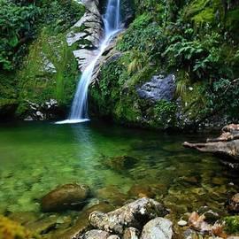 Amanda Stadther - New Zealand Mountain Pure