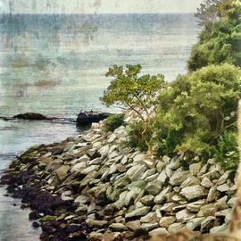 Julia Springer - Newport Cliff Walk