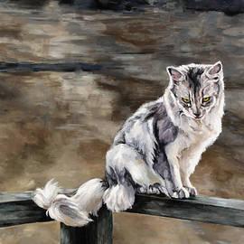 Jolante Hesse - Night Cat