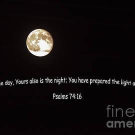 Janice Rae Pariza - Night in Psalms