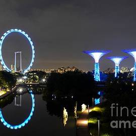 Imran Ahmed - Night shot of Singapore Flyer Gardens by the Bay and water reflections