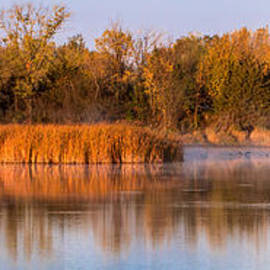 Patti Deters - Misty Flock Pano