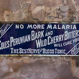 Greg Kluempers - No More Malaria NOLA DSC08361