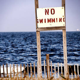 Colleen Kammerer - No Swimming