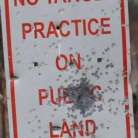 Mark McReynolds - No Target Practice