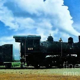 Janette Boyd - Norfolk Western Steam Locomotive 917