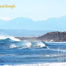 Beverly Guilliams - North Coast Surf