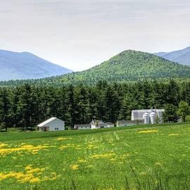 Michael Allen - North Country Farm