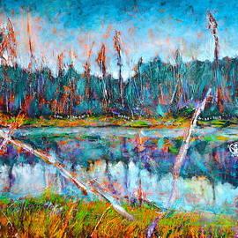 Ion vincent DAnu - North of Quebec Taiga Landscape