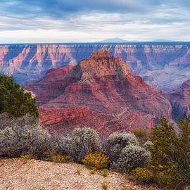 Silvio Ligutti - North Rim Grand Canyon Arizona Desert Southwest Solitude at Cape Royal