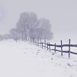 Movie Poster Prints - Northeast Winter Wonderland
