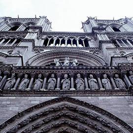 David Hohmann - Notre-Dame de Paris