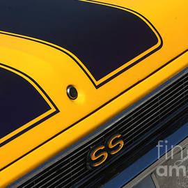 Gary Gingrich Galleries - Nova SS-8133