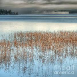 Ari Salmela - November Lake