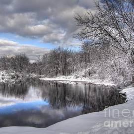 Betsy Zimmerli - November Snow