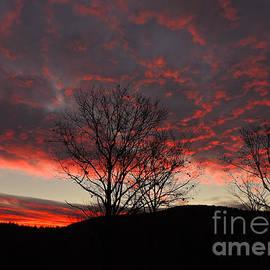 Mim White - November Sunrise