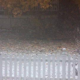 Steven Macanka - Novenmber 12 Snow 2013