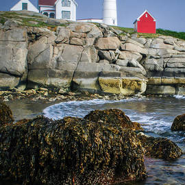 Scott Thorp - Nubble Lighthouse at low tide