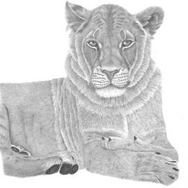 Patricia Hiltz - Nyah The Lioness
