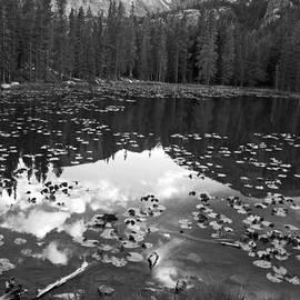 David Gilbert - Nymph Lake
