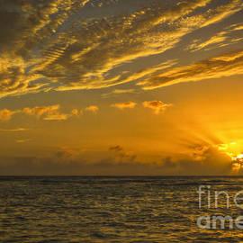 Mitch Shindelbower - Oahu Sunset