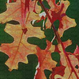 Tom Janca - Oak Leaves About To Fall