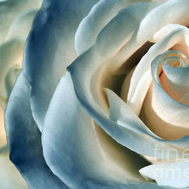 Kaye Menner - Ocean Rose by Kaye Menner