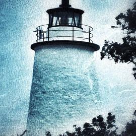Patricia Januszkiewicz - Ocracoke Lighthouse